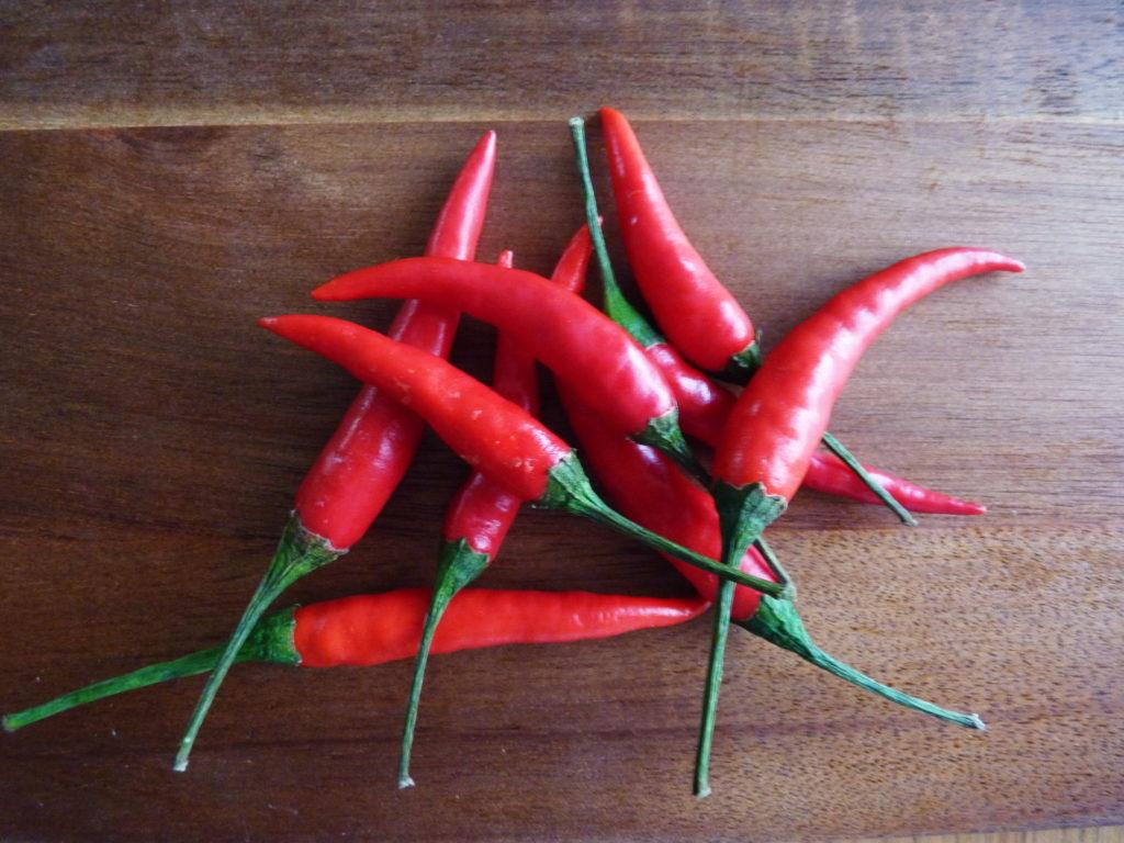 Bird´s eye chilli paprička - Ochutnejte svět